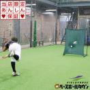 野球 壁あてネット 投球・守備練習用 ピッ...