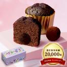 トリュフケーキ2個入り『常温配送・焼き菓子』【バレンタインデー】【ギフト】【洋菓子】