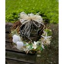 シェルリース ナチュラルなグリーンに真っ白なヒトデと貝殻の可愛いウェルカムリース