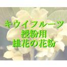 人工授粉用キウイ 花粉 1袋(お急ぎの方...