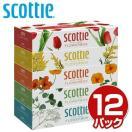 スコッティ (SCOTTIE) ティッシュペーパー フラワーボックス 320枚(160組)5箱×12パック(60箱) 41270 ティシュペーパー【あすつく】