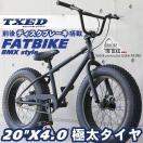 ファットバイク ビーチクルーザー 自転車 20インチ FATBIKE ファットバイク BMXスタイル
