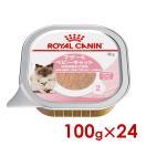 (正規品)ロイヤルカナン FHN-WET ベビーキャット 100g× 24(s5290008)