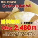 訳あり北海道産北あかり(10 kg)