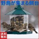 バードフィーダー バードウォッチング 野鳥...
