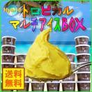 (送料無料) フロム蔵王 Hybrid★★夏限定トロピカルマルチアイスBOX24  ice cream お中元 ギフト