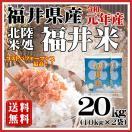 お米 20kg 福井米 福井県産 白米 10kg×2袋 29年産 送料無料
