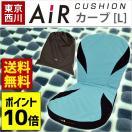 東京西川 AiR エアー ポータブル クッション カーブ L 背もたれ付き 西川エアー 専用ケース付き