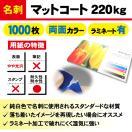 一般名刺 マットコート220kg ラミネート有り 1,000枚