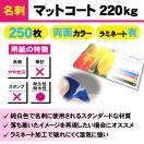 一般名刺 マットコート220kg ラミネート有り 250枚