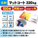一般名刺 マットコート220kg ラミネート有り 100枚