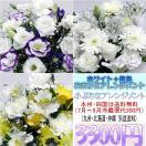 供花 ホワイト+各色 お供え用おまかせアレンジメント3,240円