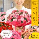 母の日 ギフト 花 カーネーション スイーツ プレゼント プレミアムシリーズ お花が好きなお母さんならきっと大喜び!送料無料・定型メッセージカード