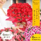 母の日 ギフト 花 バラ 寄せ植え スイーツ プレゼント スペシャルシリーズ お花が好きなお母さんならきっと大喜び!送料無料・定型メッセージカード