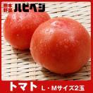 トマト【L・Mサイズ2玉〜3玉】同梱専用 ※...