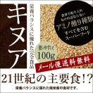 【メール便送料無料】栄養バランスが優れた完全食品 キヌア100g スーパーフード