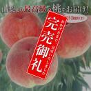 山梨県産の最高級もぎたての桃[最上級品]【産地直送品】−LL・9玉【送料無料】