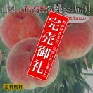 山梨県産の最高級もぎたての桃【産地直送品】−L・11玉【送料無料】