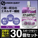ビジョンクエスト VISION QUEST エネルギー...