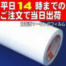 ホワイト【光沢】屋外3〜4年カッティング...
