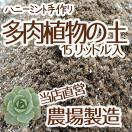 【当店農場生産】多肉植物&セダムの土 15...