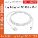 Apple純正 iPhone iPad ライトニングケーブル 1m 本体同梱品 MD818AM/A