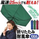 ◆レッド限定→お値打ち価格!!◆ 強風に負けない!頑丈で壊れにくい ゲリラ豪雨傘 100cm 耐風仕様 メンズ レディース 風速25m/s対応 長傘 かさ ◇ 耐風傘:レッド