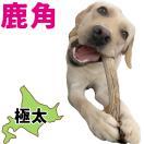 北海道産★鹿の角★犬のおもちゃ15〜25cm【...