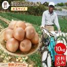 淡路島玉ねぎ【訳あり大玉サイズ】10キロ☆ たまねぎ タマネギ  淡...