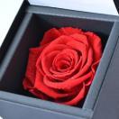 花 プレゼント DIAMOND ROSE ダイヤモンド ローズ 赤い バラ プリザーブドフラワー (お磨きクロス付ギフトセット) 彼女  誕生日  ∞