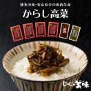からし高菜(辛子高菜) 2袋   送料無料  福...