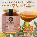 初回限定 クーポンで半額 送料無料 マリーハニー TA 20+ 250g  マヌカハニーと同様の健康活性力! オーストラリア・オーガニック認定 honey はちみつ 蜂蜜