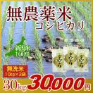 米 無農薬米 コシヒカリ 無洗米 30kg(10kg×3袋)/アイガモ米 自然栽培米 新潟米