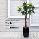 フェイクグリーン パキラ 130cm (人工観葉植物 光触媒対応 インテリア)