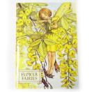 ★廃番★A5 ポケットクリアファイル キバナフジ[Flower Fairies]フラワーフェアリー輸入ファイル・妖精