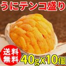 (送料無料) うにテンコ盛り 約40g 10個セット 焼うに 貝付 貝焼き ウニ 雲丹 うに 蒸しうに ムシウニ バフンウニ クール便