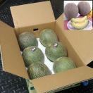 送料無料 緊急スポット 熊本 肥後グリーン メロン 1箱約8kg 4~6玉入