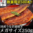 (セール 限定150本)食べ応え満点!超メガサイズの国産うなぎ蒲焼き 250g-269g×1本