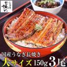 国産 大サイズ うなぎ 蒲焼き 150g-169g×3本(送料無料 鰻)