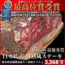 とちぎ霧降高原牛45日熟成肉 白カビドライエイジング