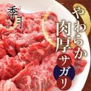 牛肉 バーベキュー BBQ 焼肉 やわらか厚切り サガリ 500g