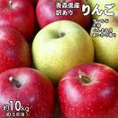 28年度 青森県産訳ありりんご10kg サンふじ&王林(どちらか選択&ミックス可)