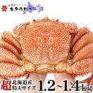 お中元 御中元 毛ガニ カニ かに 北海道産 超特大サイズ 1.2-1.4kg前後 1尾入
