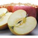 (オープン記念)山形県産 訳ありサンふじ 約10kg バラ詰め 林檎 りんご 産地直送 取り寄せ(送料無料)