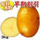 【早期予約】じゃがいも種芋 シンシアP 3kg
