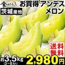 メロン 限定  大特価 熊本・茨城・山形産  アンデスメロン 4kg 1箱(3~8玉)【早割セール】