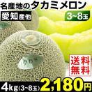 メロン 名産地のおいしい 貴美(タカミ)メロン 4kg 1箱(3~8玉)送料無料【早割セール】