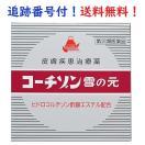 【指定第2類医薬品】 雪の元コーチゾン 15g 定形外郵便他 送料無料!