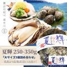 天然岩牡蠣 (活)夏輝牡蠣 300g-400g前後(大サイズ) 5個セットブランド 夏輝牡蠣 鳥取産 カキ 刺身用 送料無料(岩ガキ/岩がき)