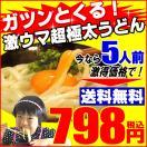 送料無料 うどん 極太讃岐うどんセット【クロネコDM便指定】